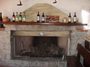 Camino con vino Cannonau