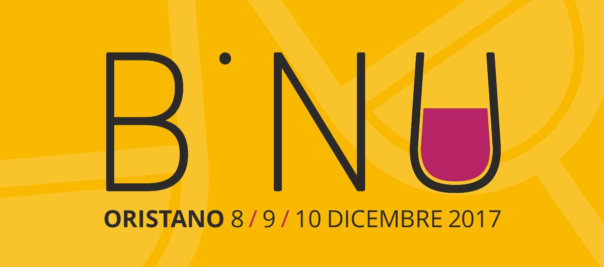 Logo Binu 2017