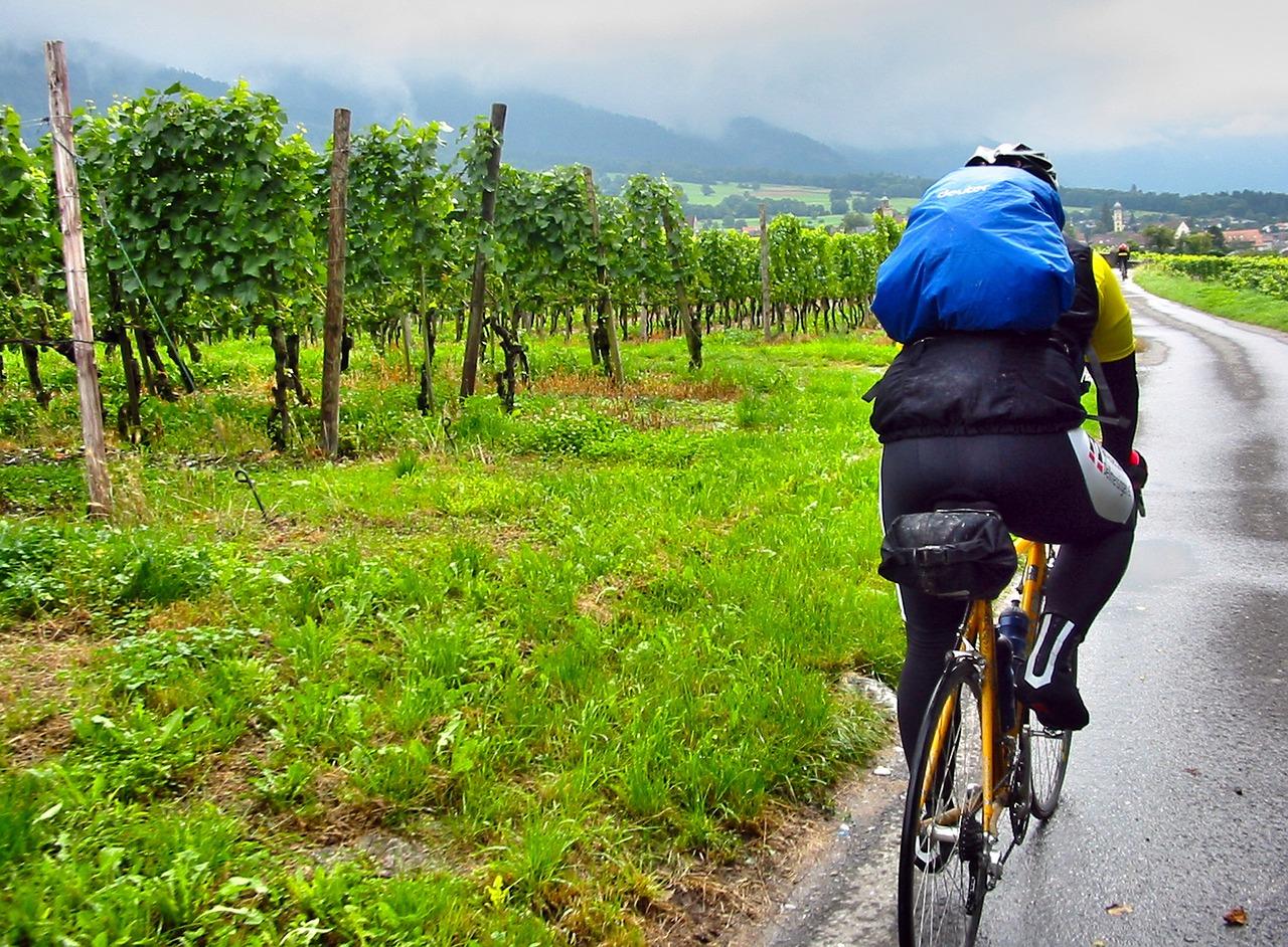 Ciclista in vigna sotto la pioggia
