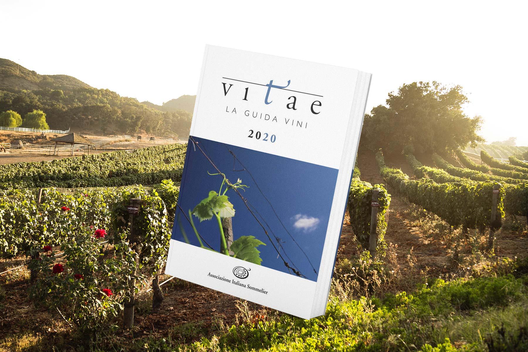 Guida Vitae AIS 2020 libro