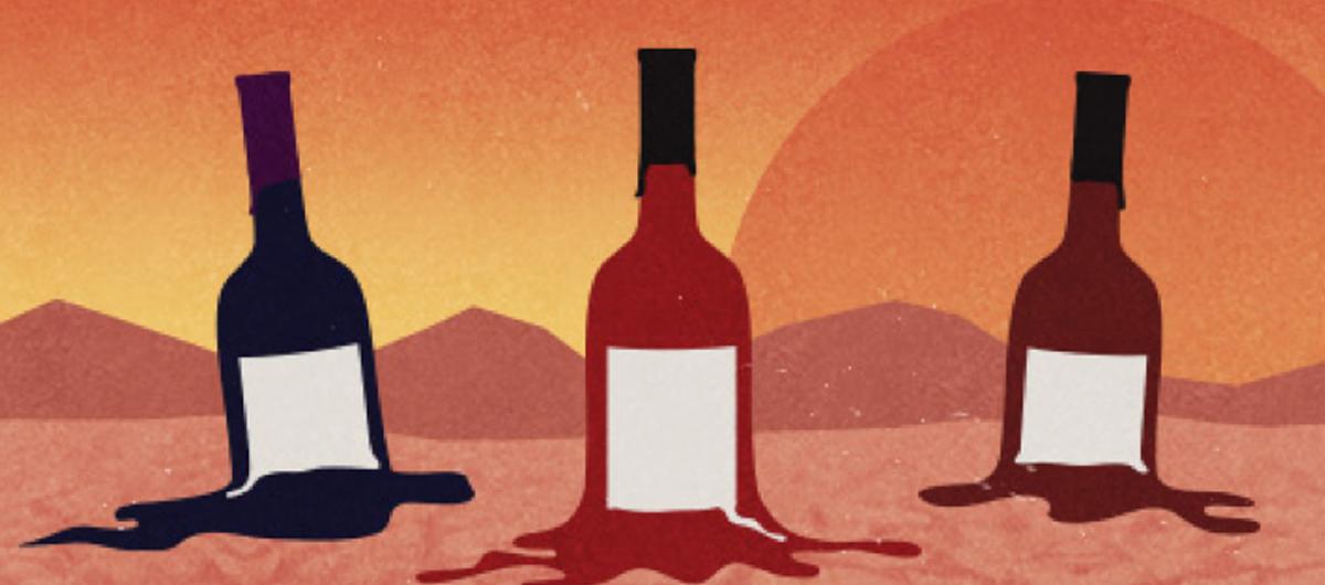 Dipinto bottiglie di vino