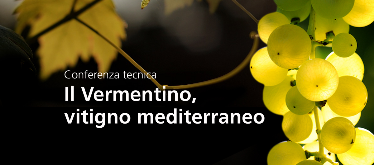 Manifesto Vermentino Mediterraneo