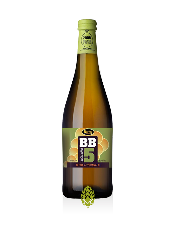 BB 5 - Birrificio Barley