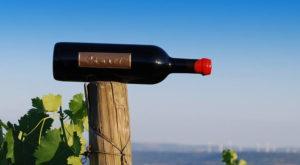 Pumari vino sopra palo di legno Cantina Pùmari