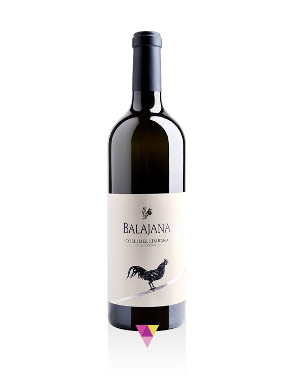 Balajana - Cantina Sociale Gallura