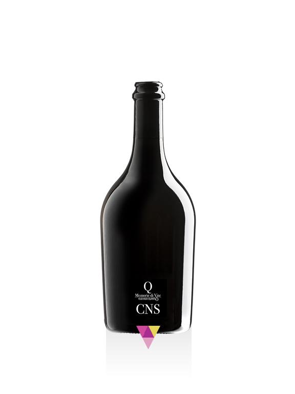 CNS - Quartomoro di Sardegna