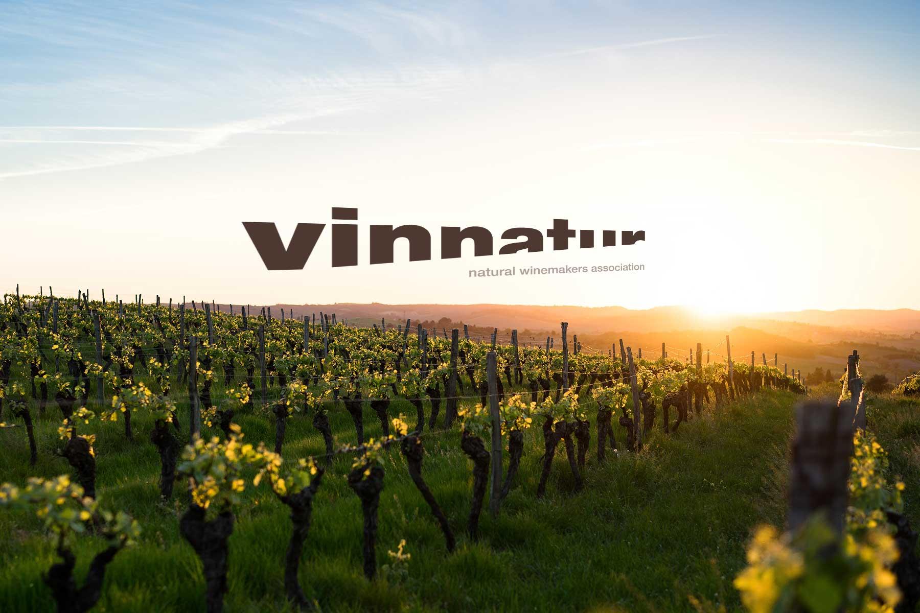 Logo VinNatur in vigna