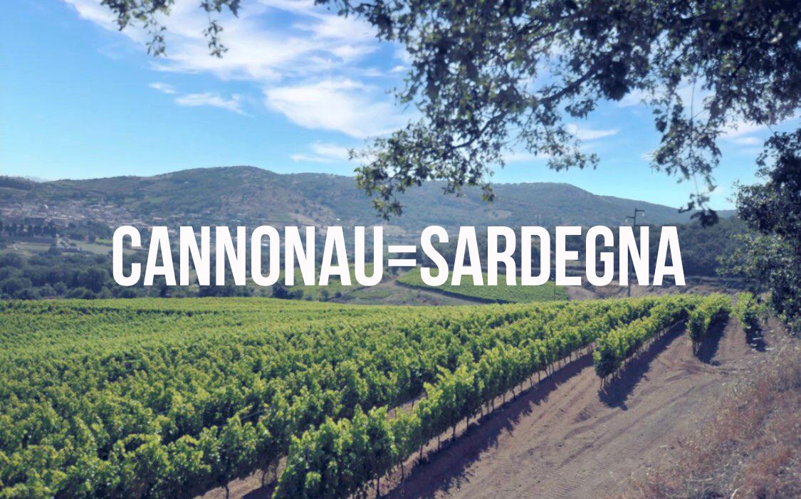 Vigna di Cannonau a Mamoiada