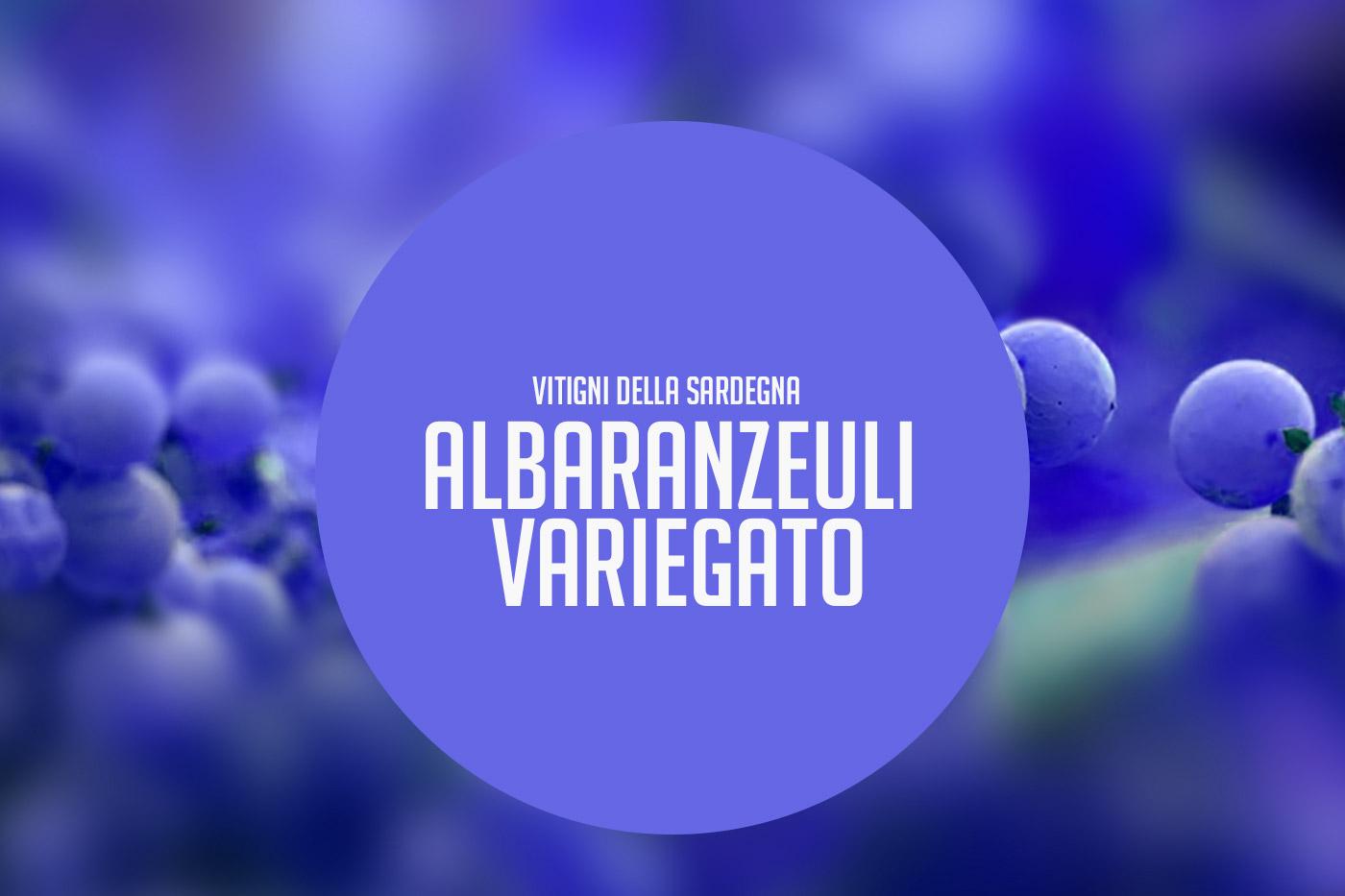 Albaranzeuli variegato