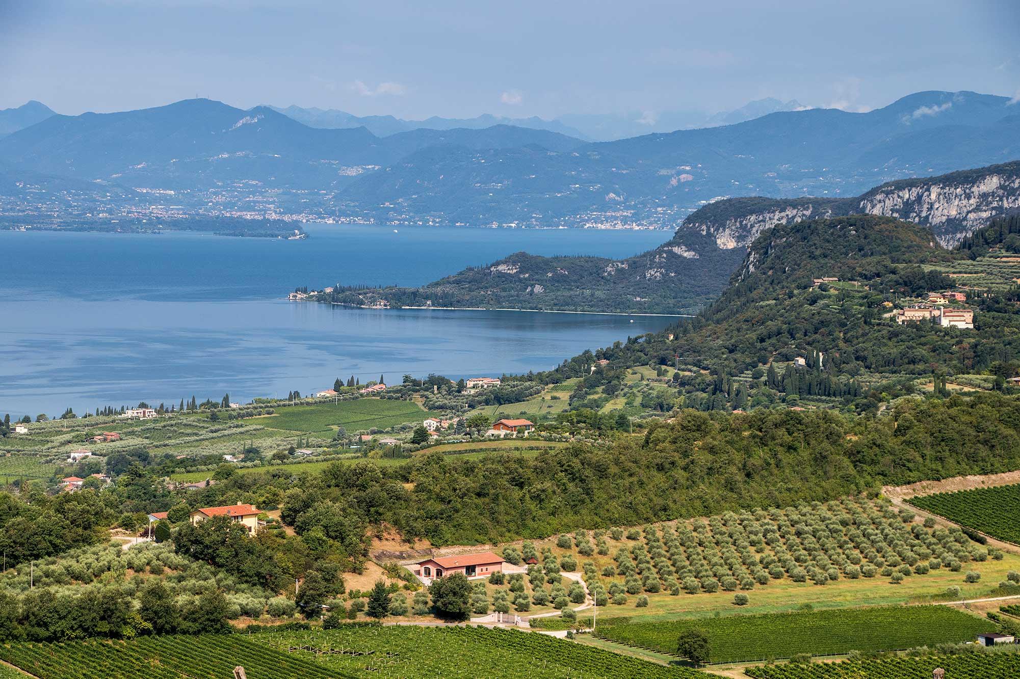 Bardolino: istituite ufficialmente le sottozone Montebaldo, La Rocca e Rommacampagna